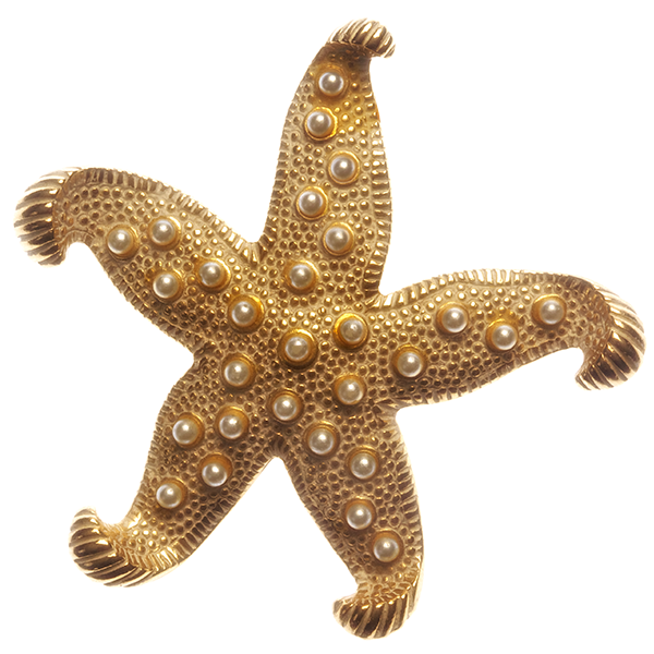 Gold Starfish Pin